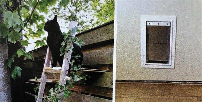 Een klusser voor een kattenluikje